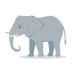 Elephant cartoon large mammal forest elephant vector