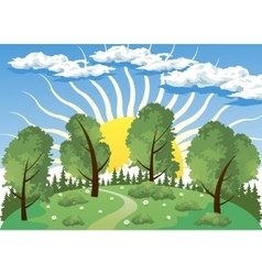 Forest landscape with sun vector