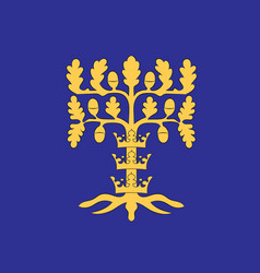 Flag of blekinge is one of the traditional vector