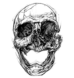 Broken Skull Drawing line work vector image vector image