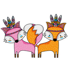 Fox animals couple together with feathers vector