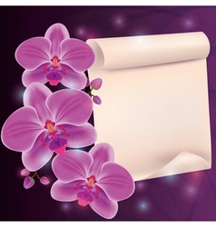 Greeting card with exotic flower orchid and paper vector image vector image