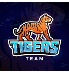 Tiger sport logo Mascot design template vector image vector image
