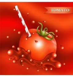 Red fresh tomato with tubule vector