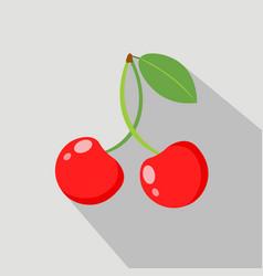 cherry flat icon vector image vector image