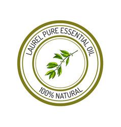 Laurel essential oil label aromatic plant vector
