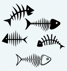 Fish bone vector