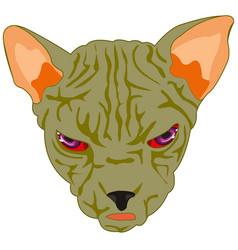 Mug of the cat sphinx vector