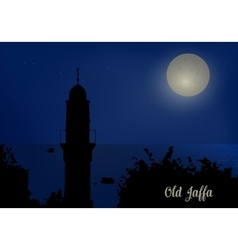 Silhouette of minarets against the night sky vector