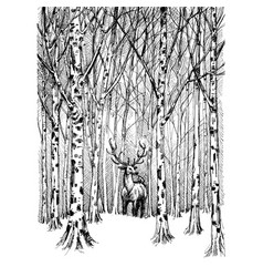 Wildlife carbon drawing deer in winter forest vector