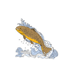 Brown trout swimming up turbulent water drawing vector