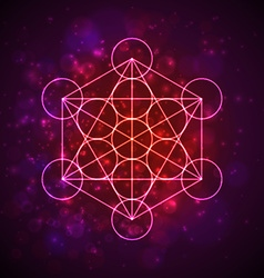 Metatrons Cube - Flower of Life Flower of Life vector image