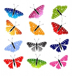 butterfly set for your design vector image vector image