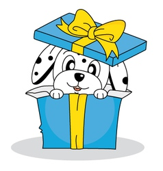 dalmatian dog out of a gift box vector image vector image