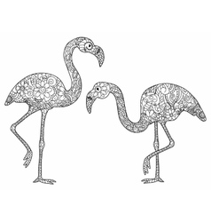 Two flamingos coloring for adults vector image