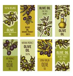labels set for olive oil bottles design vector image vector image