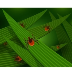 Mites in the tall green grass vector