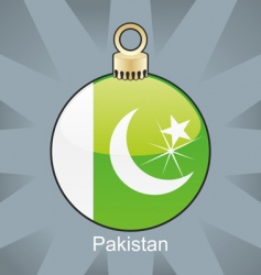 Pakistan flag on bulb vector image vector image