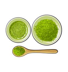 Bowl and bamboo spoon of matcha powder green tea vector