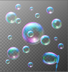 Realistic transparent soap bubbles vector