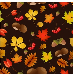 Autumnal seamless bacgground vector image