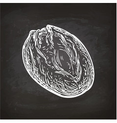 bread sketch on chalkboard vector image vector image