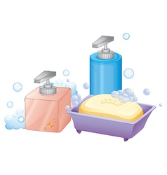 A liquid and bar soap vector
