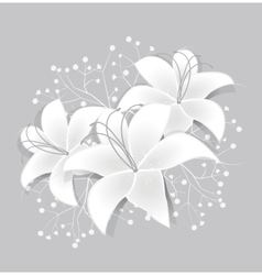 White lilies vector image vector image