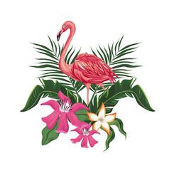 flamingo flowers exotic tropical bird vector image