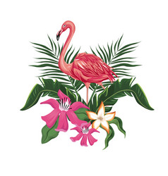 flamingo flowers exotic tropical bird vector image