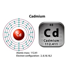 Symbol and electron diagram for Cadmium vector image vector image