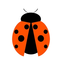 Icon of ladybug vector