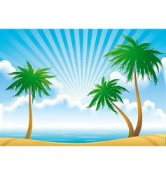 morning coast vector image vector image