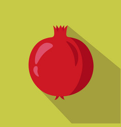 pomegranate flat icon vector image vector image