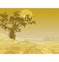 Yellow landscape tree in the desert vector