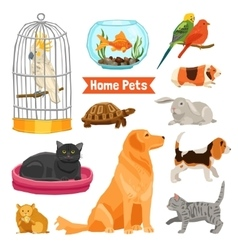 Home pets set vector