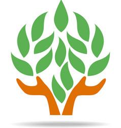 Tree design graphic icon template white background vector image