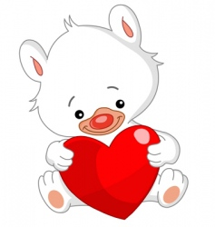 valentine white teddy bear vector image
