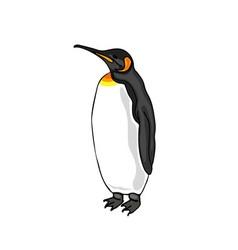 Bird emperor penguin vector