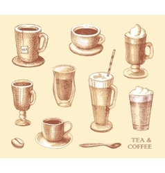 Set of sketches of cups of coffee and tea vector image vector image