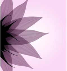 Abstract pink flower vector image