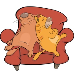 Cats on a sofa vector image vector image
