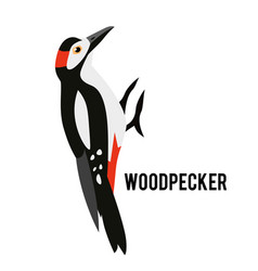 Great spotted woodpecker winter bird in a flat vector