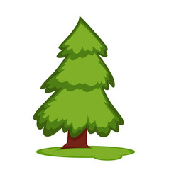 Tall fir tree on piece of grass land vector