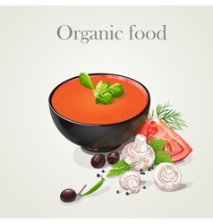 tomato soup with fresh vegetables vector image