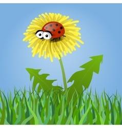 Ladybug on a dandelion vector image vector image
