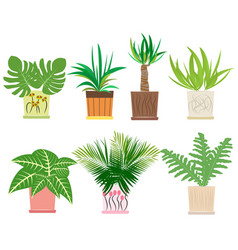 Set of colorful houseplants in pots vector