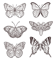 Set of hand drawn butterflies vector