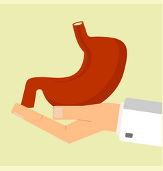 Doctor hand holding human stomach healthcare vector
