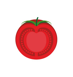 Tomato slice isolated red juicy vegetables on vector